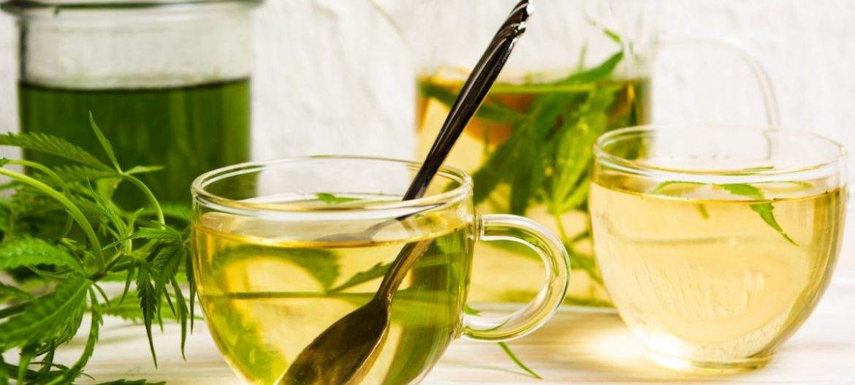 Herbaty konopne
