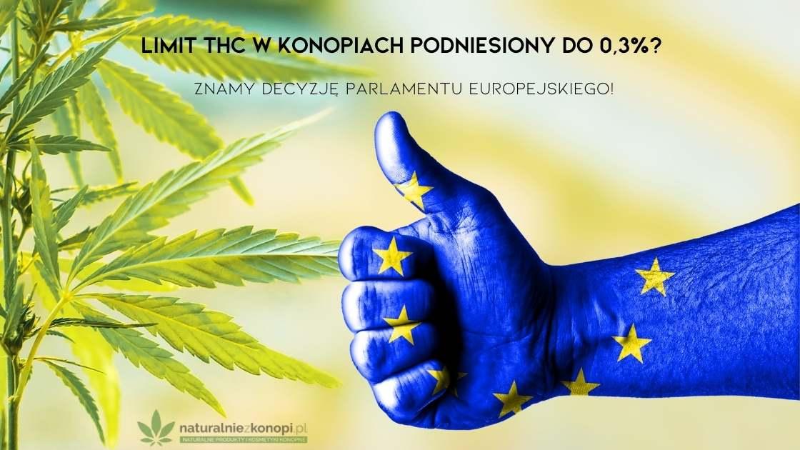 Parlament Europejski THC