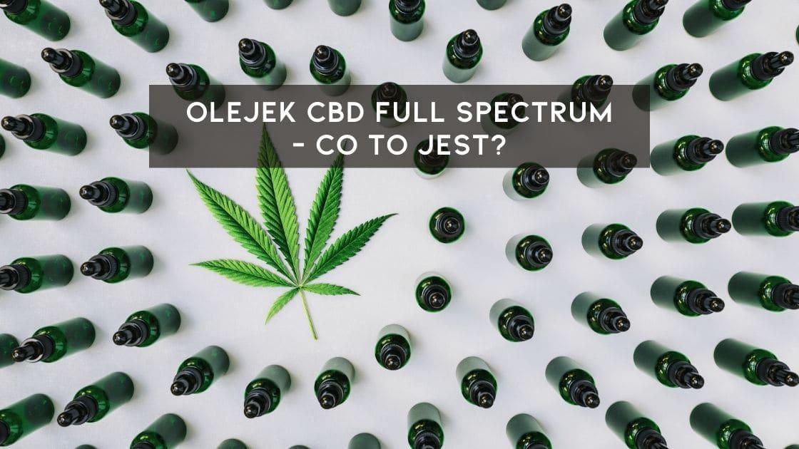 Czym jest olejek cbd full spectrum
