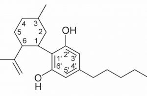 Kannabinol CBN jest to kannabinoid